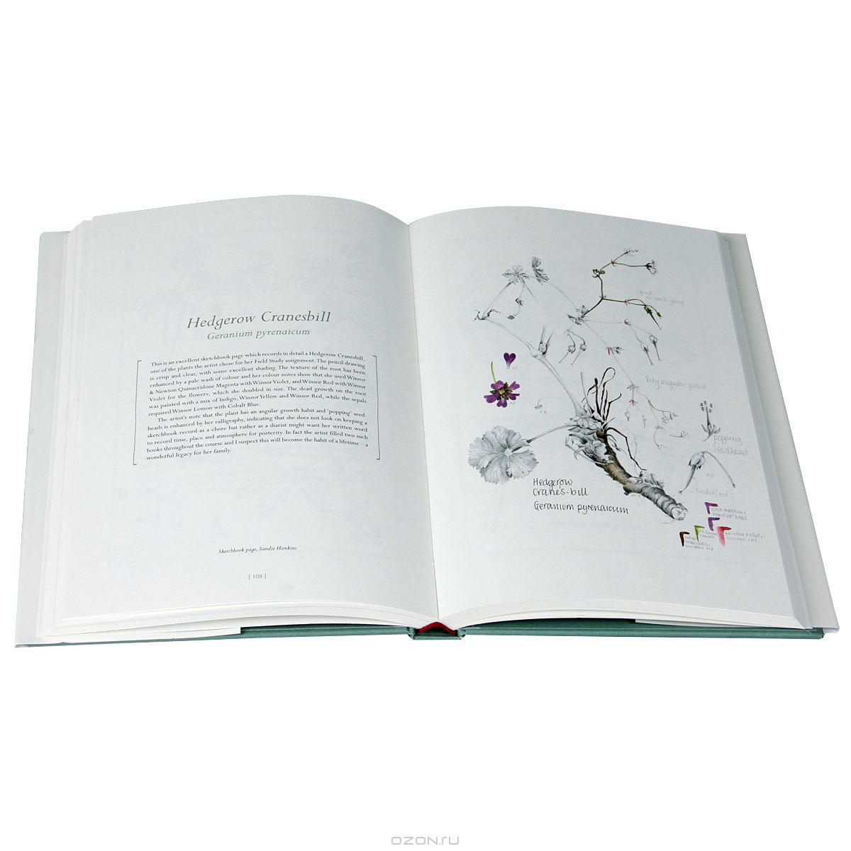 book Fourier Integral Operators 2011