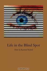 Life in the Blind Spot