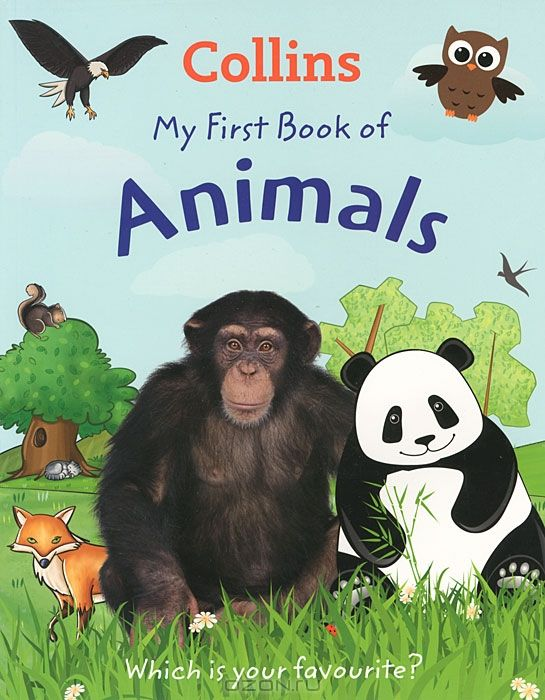 My First Book of Animals: Which is Your Favourite?