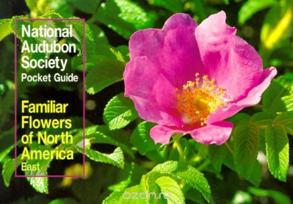 National Audubon Society Pocket Guide to Familiar Flowers